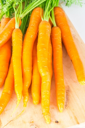 Fresh carrots with green tops photo