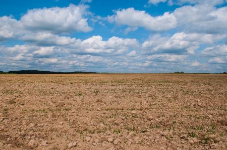 plowed field is empty in the sky photo