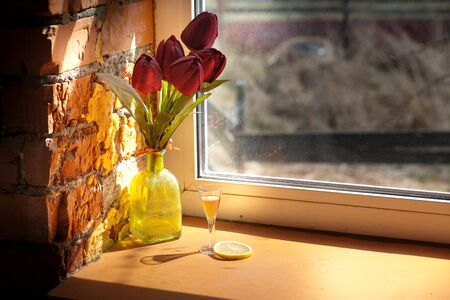 a glass of cognac with lemon in natural light from the window.still-life