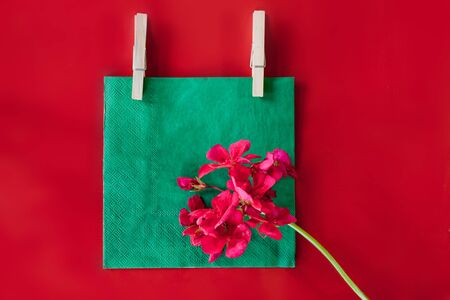 red postcard template with flowers and copy space Banque d'images