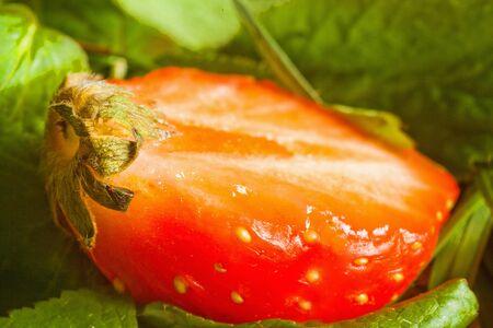 fresh strawberries macro photography, close-up