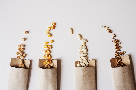 semillas de verduras en sobres de papel artesanal. Preparaciones de jardín de primavera para sembrar semillas, organización y almacenamiento por seguridad. Foto de archivo