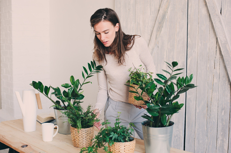 young woman watering flowerpots at home. Casual lifestyle series in modern scandinavian interior