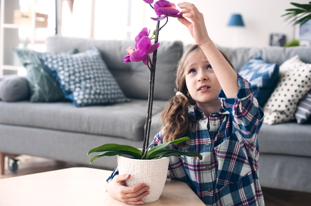 happy kid girl with orchid flower in pot. Modern living room with house plants