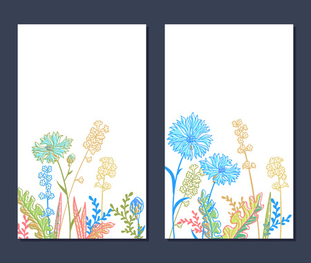 vactor: set of vertical floral backgrounds with field flowers Illustration