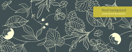 buttercup  decorative: Summer forest. horizontal background with hand drawn forest herbs Illustration