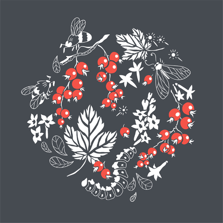 currant: Currant. Vector floral hand drawn illustration with berries and insects. Circle composition with natural elements