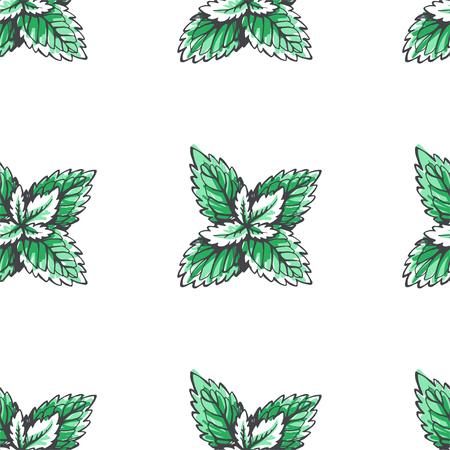Vector seamless pattern with mint leaves. Botanical hand drawn illustration of herb. Floral texture Illusztráció