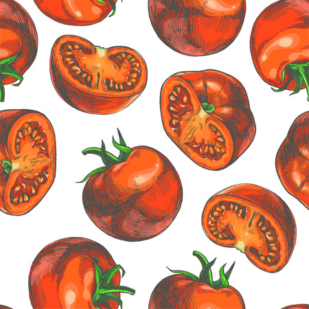 Vector seamless pattern with red tomatoes full and halves. Hand drawn color texture with fresh vegetables isolated on white background. Ilustração