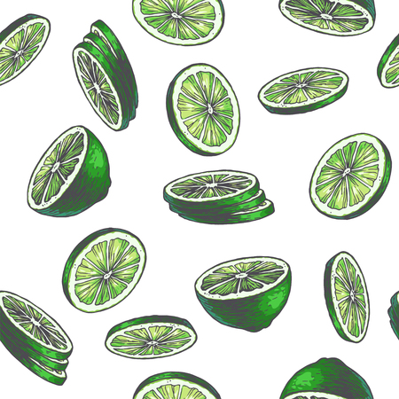 Vector vintage seamless pattern with lime isolated on white. Hand drawn color texture with green slices of citrus. Fruit rounds sketch Ilustrace