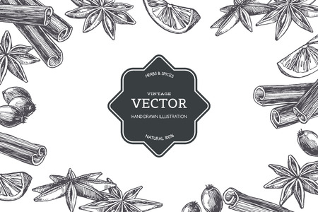 Vector vintage background with spices isolated on white. Hand drawn texture with cardamom and cinnamon in engraving style. 向量圖像