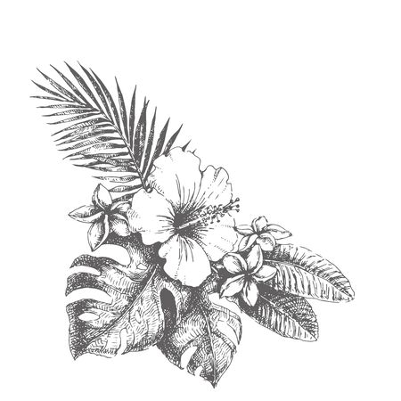 Vector vintage illustration of tropical bouquet. Hand drawn botanical sketch with hibiscus, plumeria, monstera and palm leaves in engraving style. Exotic flowers. Иллюстрация