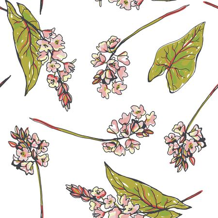 Vector color seamless pattern with buckwheat flowers. Botanical hand drawn illustration with blossom branches of meadow herb and leaves in sketch style.