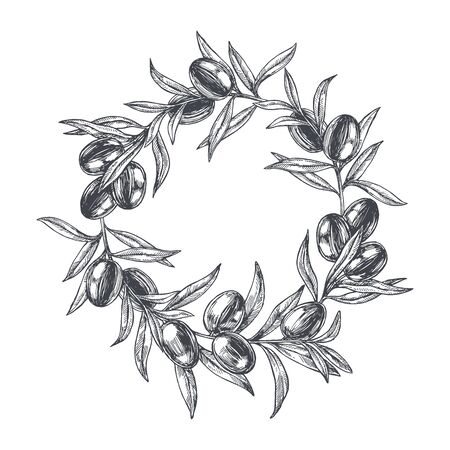 Vector vintage background with border of olive branches. Hand drawn botanical texture with plant in engraving style. Black and white sketch for food design.