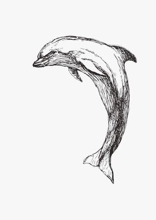 Vector hand drawn illustration of dolphin isolated on white. Sketch of wild sea animal for print on clothes.