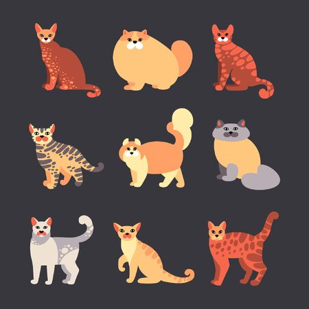 Vector set of cats in a flat style isolated on background. Collection of pets.