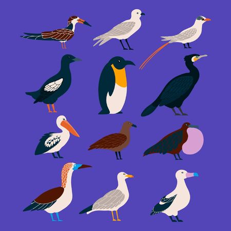Vector set of seabirds in a flat style isolated on background. Atlantic seabirds