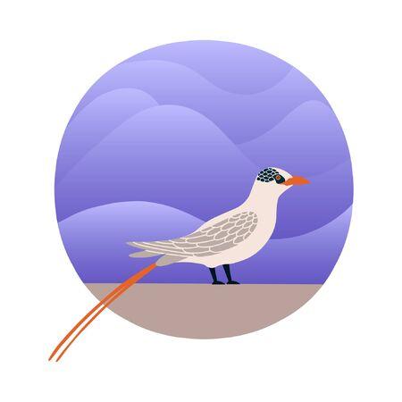 Vector illustration of Phaeton Bird in a flat style. Atlantic seabird. Cartoon style