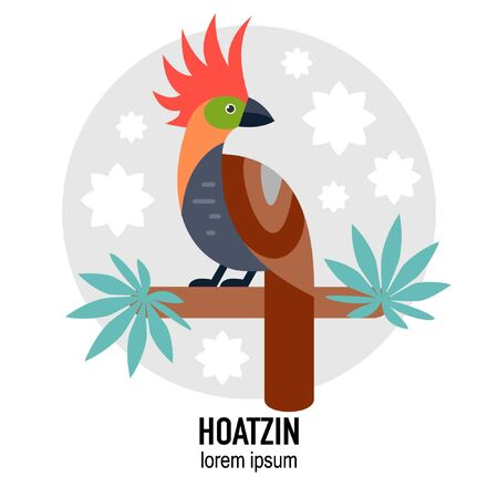 Hoatzin bird vector flat illustration with leaves Stock Illustratie