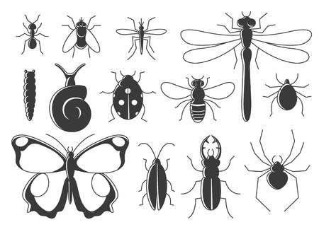 Insects set in flat style. Line art bugs icon collection. Illustration
