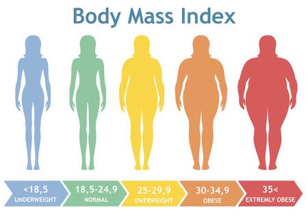 Ilustración del vector de índice de masa corporal de bajo peso a extremadamente obesos. Mujer siluetas con diferentes grados de obesidad. Cuerpo femenino con diferente peso.