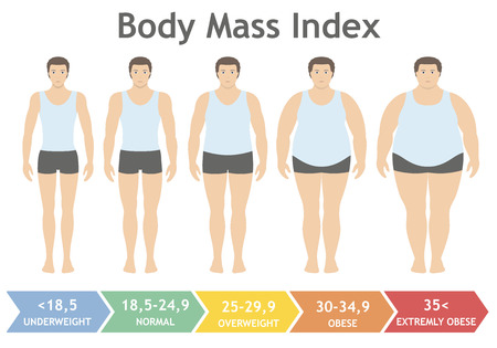 Body mass index vector illustration from underweight to extremely obese in flat style. Man with different obesity degrees. Male body with different weight. Banco de Imagens - 85997534