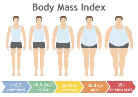 Ilustración de vector de índice de masa corporal de bajo peso a extremadamente obeso en estilo plano. Hombre con diferentes grados de obesidad. Cuerpo masculino con diferente peso.