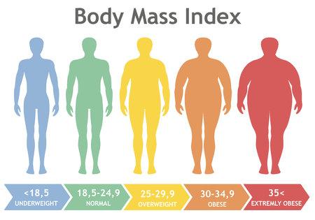 Ilustración del vector de índice de masa corporal de bajo peso a extremadamente obesos. Hombre siluetas con diferentes grados de obesidad. Cuerpo masculino con diferente peso.