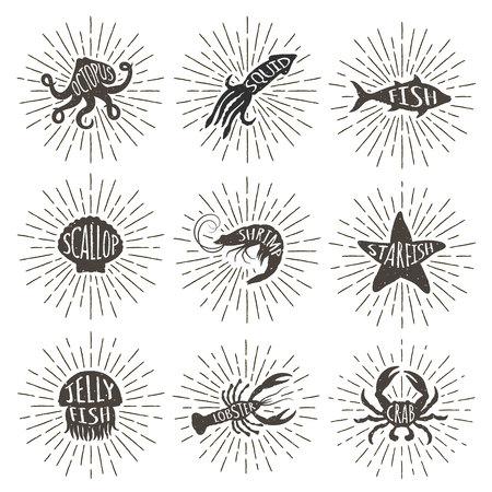 Set of vintage hand drawn sea animals with sun rays. Sea food icons on sunburst background.