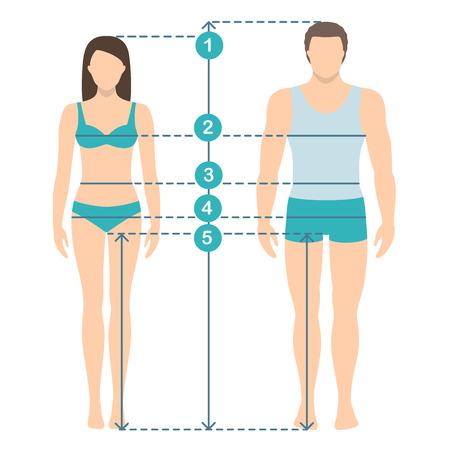 Ilustración de vector de hombre y mujer en toda su longitud con líneas de medición de parámetros corporales. Medidas tallas hombre y mujer. Medidas y proporciones del cuerpo humano. Diseño plano.