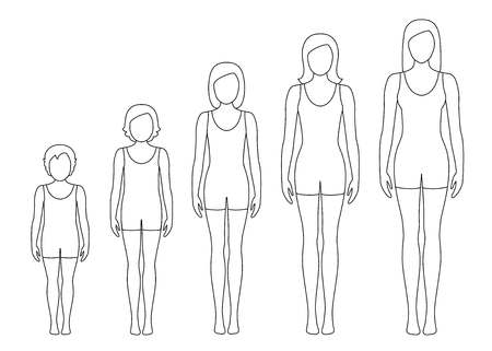 Womens body proportions changing with age. Girls body growth stages. Vector contour illustration. Aging concept. Illustration with different girls age from baby to adult.