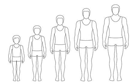 Mans body proportions changing with age. Boys body growth stages. Vector contour illustration. Aging concept. Illustration with different mans age from baby to adult. European men flat style. Illustration