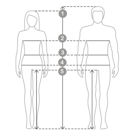Illustrazione di contorno vettoriale di uomo e donna in piena lunghezza con linee di misurazione dei parametri del corpo. Misure taglie uomo e donna. Misure e proporzioni del corpo umano.