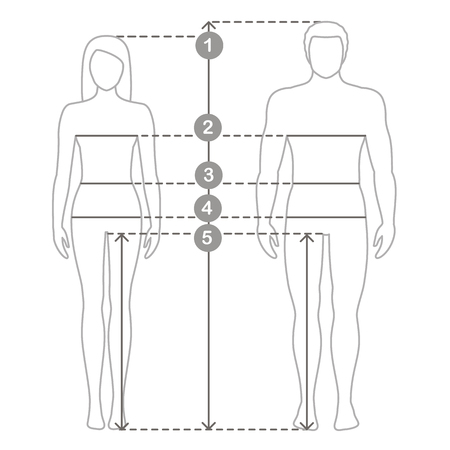 Vector contour illustration of man and women in full length with measurement lines of body parameters . Man and women sizes measurements. Human body measurements and proportions.
