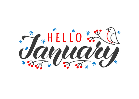 Hello january hand drawn lettering card with doodle snowlakes and bird. Inspirational winter quote. Motivational print for invitation or greeting cards, brochures, poster, t-shirts, mugs.