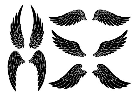 Set of hand drawn bird or angel wings of different shape in open position. Black doodle wings set