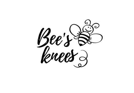 Bees knees phrase with doodle bee on white background. Lettering poster, card design or t-shirt, textile print. Inspiring motivation quote placard. Ilustração