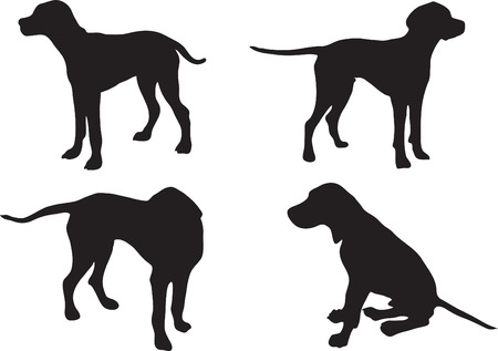 Silhouette of a dog (pointer) Vector
