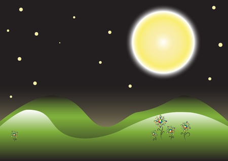 starshine: Nighttime landscape with spectral flowers