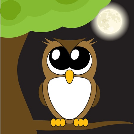 bird's eye view: Very cute cartoon owl with big eyes,