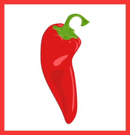 cayenne pepper: Red hot chili pepper, vector illustration Illustration