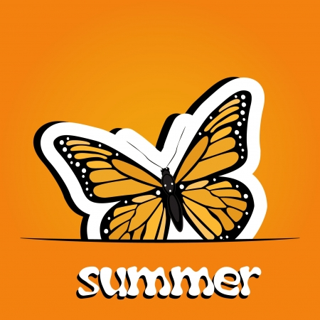 beach butterfly: Pretty summer background with butterfly