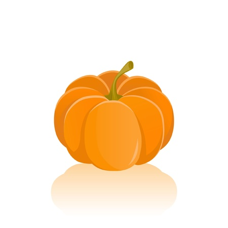 Pumpkin vegetable orange Stock Vector - 16586459