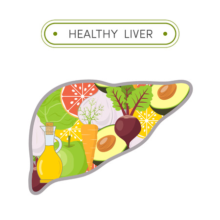 健康な肝臓の概念。 肝臓のクレンジング食品の漫画イラスト。人間の肝臓の形に野菜や果物