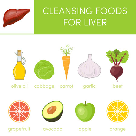 cleansing: Concept of healthy liver.  Cleansing foods for liver. Set of cartoon icons for infographics Illustration