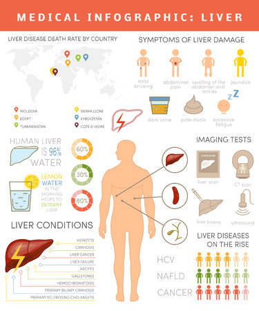 Liver info-graphics. Set of icons and charts for healthcare info graphic. Medical data about human liver