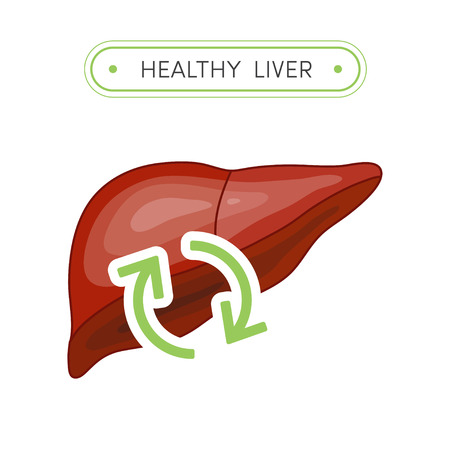 bile: Healthy human liver. Simple cartoon flat illustration with refresh sign symbolizing health Stock Photo
