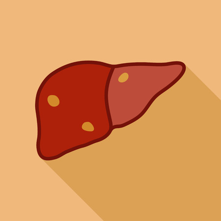 hepatic: Fatty liver. Simple cartoon flat vector illustration with long shadow.