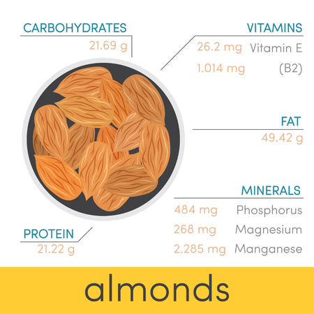riboflavin: Nutritional value of almonds, vector infographic elements