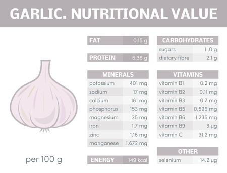 nutritional: Nutritional value of garlic, vector infographic elements